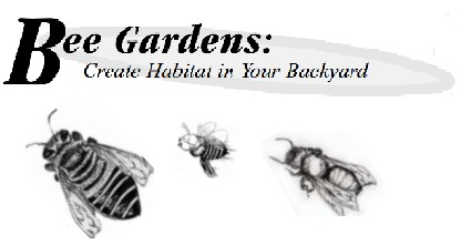 Creating Bee Friendly Backyards